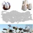 Türkiye Tekstil Pamuk Sektörü