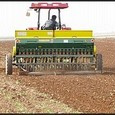 Çin tahıl ihtiyacının yüzde 95'ini kendi karşılayacak