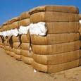 Çin pamuk ithalatı geriledi